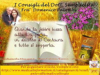Febbre e Centaurea - I Consigli del Dottor Semplicista©
