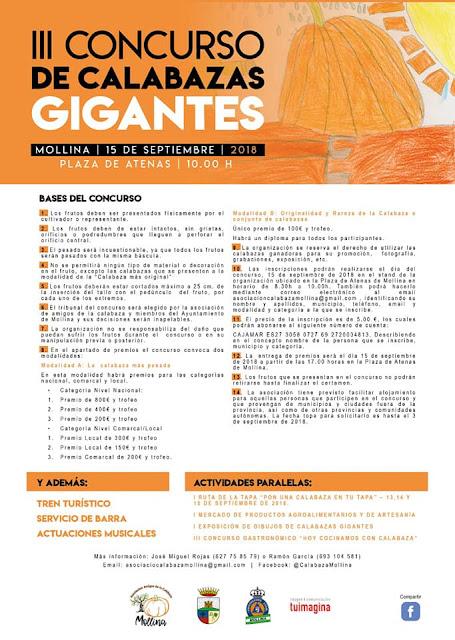 III Concurso de Calabazas Gigantes en Mollina