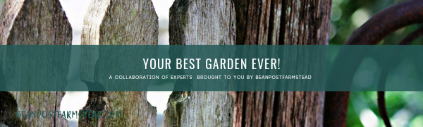 Your best garden ever.