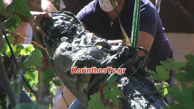 Δύο μεγάλα αρχαία αγάλματα βρέθηκαν μέσα σε πηγάδι στο Πετρί Νεμέας (βίντεο)