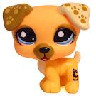 Littlest Pet Shop LPSO com Jack Russell (#1496) Pet