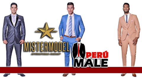 Mister Model International 2017 / 2018 | Formal Wear