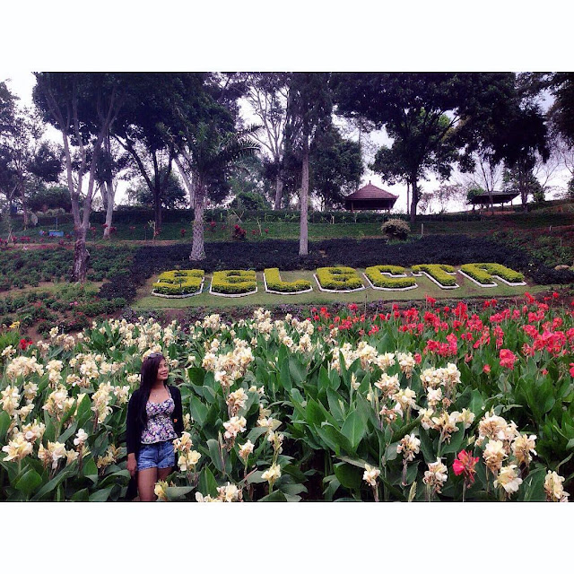 foto bunga di taman selecta