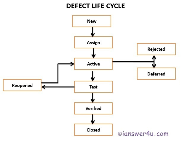 Software Bug Life Cycle & Guidelines, Process Bug Life Cycle Stages