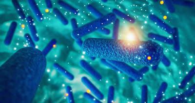 """Las cuatro bacterias """"superresistentes"""" a los antibióticos que más afectan a los latinoamericanos"""