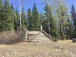 Trip Adisor image of Bankhead AB church steps