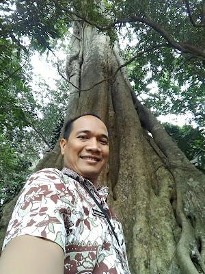 Kolam renang Cigugur Kuningan dengan pohon besar