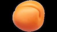 free apricot fruit clip art