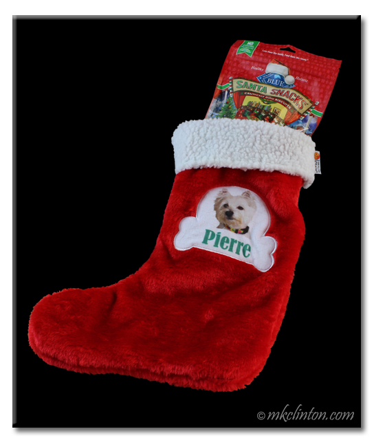Pierre's PrideBites stocking is filled with Santa Snacks from Chewy