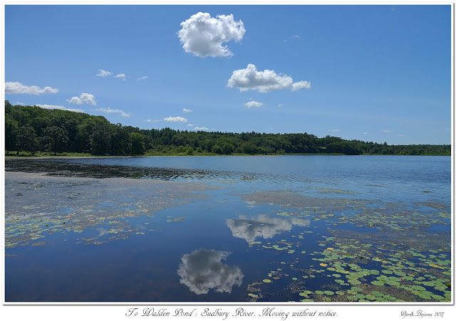 To Walden Pond: Sudbury River. Moving without notice.