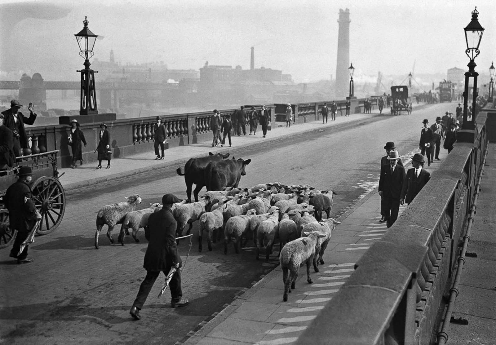 Crossing the Waterloo Bridge. 1924.
