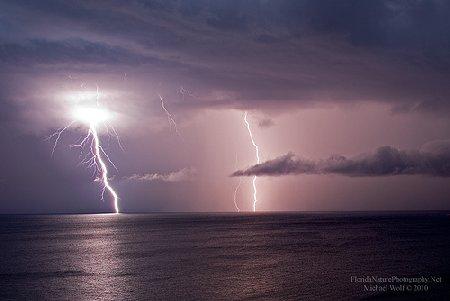 Interesting Things Does Lightning Kill Fish