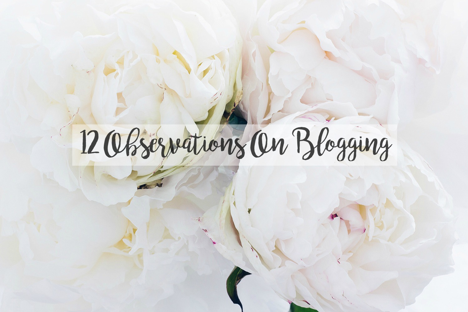 Peonies, Flowers, Blogging Thoughts, Katie Writes,