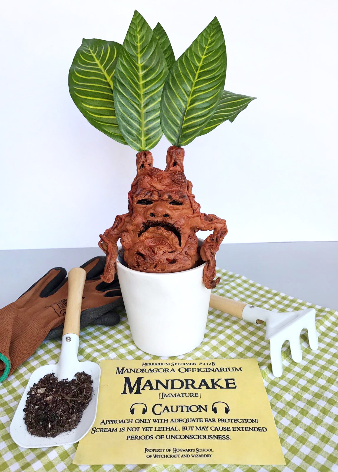 Fiesta diy de harry potter c mo hacer una mandr gora - Mandragora decoracion ...