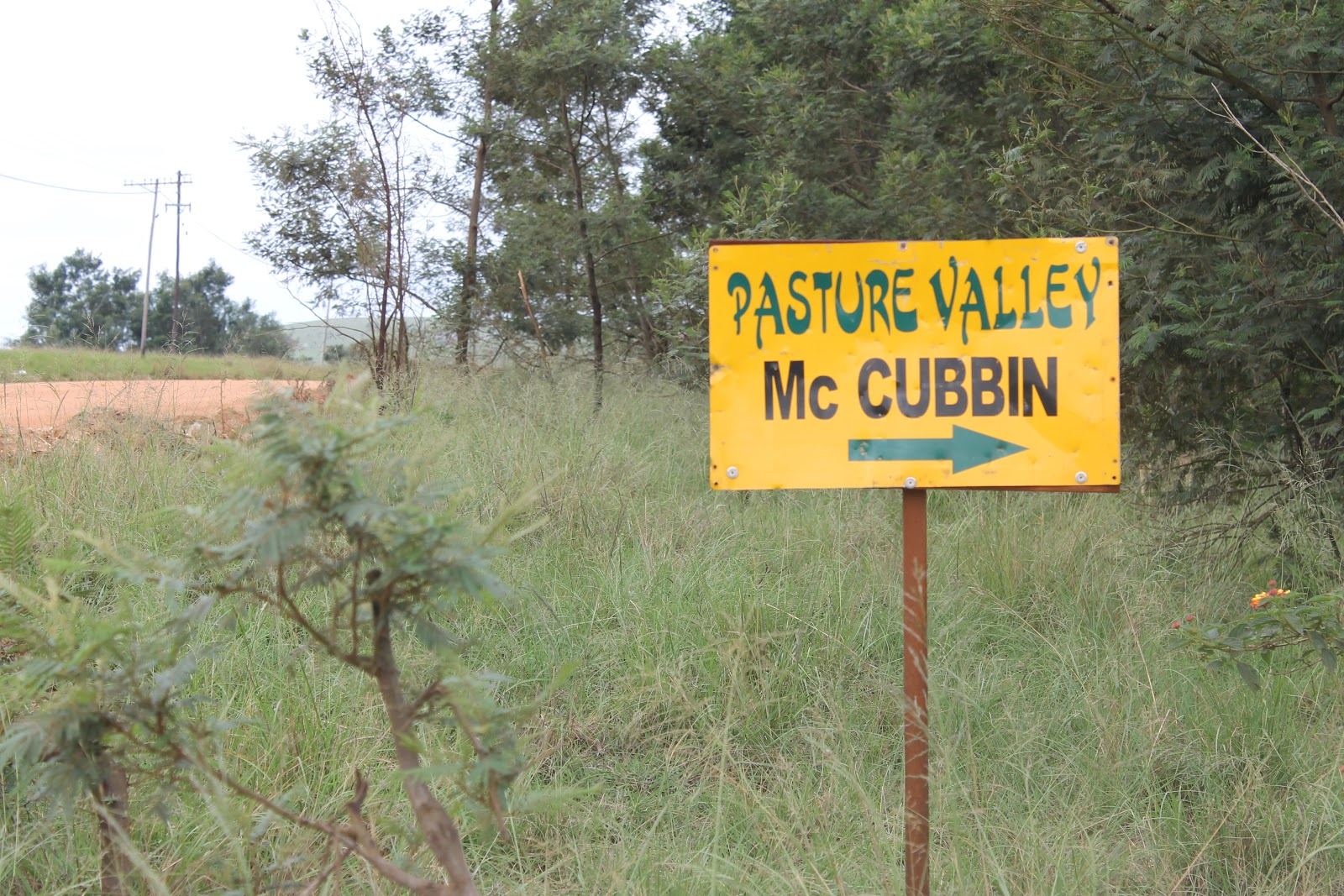A Peace Of Swaziland: Pasture Valley Children's Home