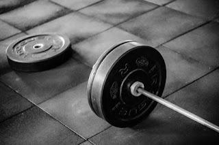 Full body workour plan for beginners