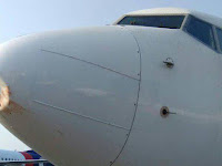 Pesawat Lion Air Tabrak Burung Kuntul di Surabaya, Moncong Penyok