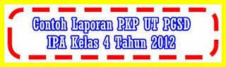 Contoh Laporan PKP (Peningkatan Kemampuan Profesional) - PKP SD