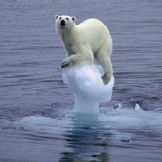 Calotte polari scioglimento