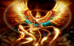 fantasy desktop hd wallpapers backgrounds phoenix pc background fire dragon wizard angel cool themes mythical bird amazing really per pheonix