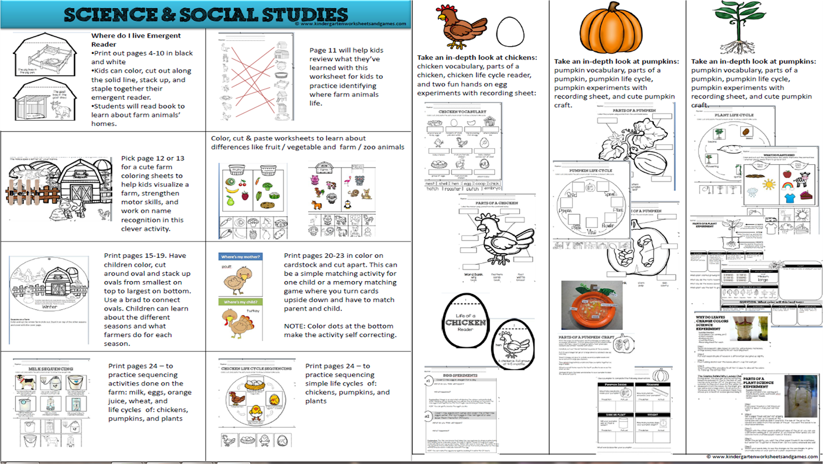 Social Stu S Worksheet For Grade 1