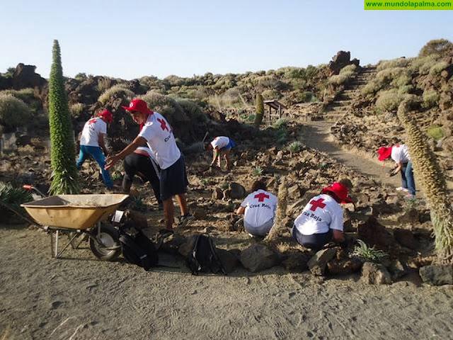 Cruz Roja pone en marcha un proyecto para la conservación y mejora de los Parques Nacionales del Teide, la Caldera y Garajonay