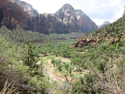 Picture of mountains and the Virgin River in Zion National Park