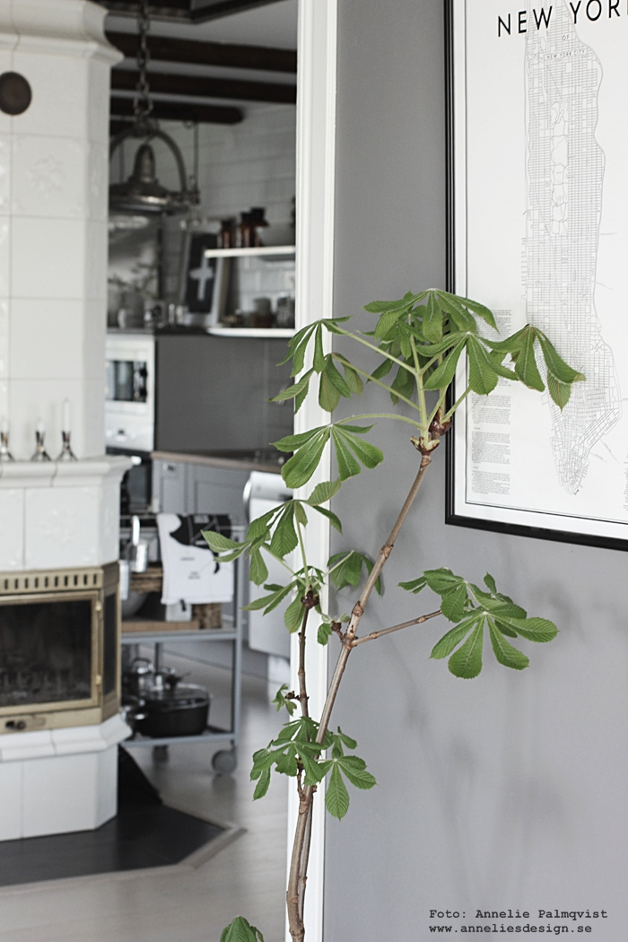 ta in kvistar från naturen, kök, köket, matsal, matsalen, inredning, inredningsblogg, blogg,