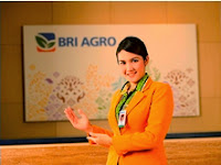 PT Bank BRI AGRO Tbk - Recruitment For D3, S1 Staff, Auditor, Programmer January 2015