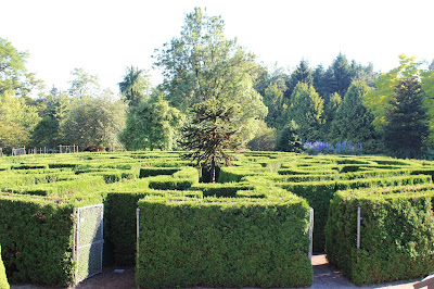 A Labyrinth of bushes - a maze where I can get lost