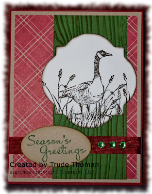 Wetlands, Christmas Card, Goose, Stamp with Trude, Stampin' Up!