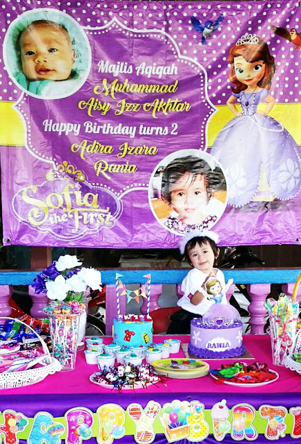 birthday tema sofia the first