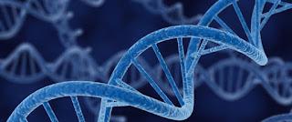 Biyolojinin Konusu Nedir?