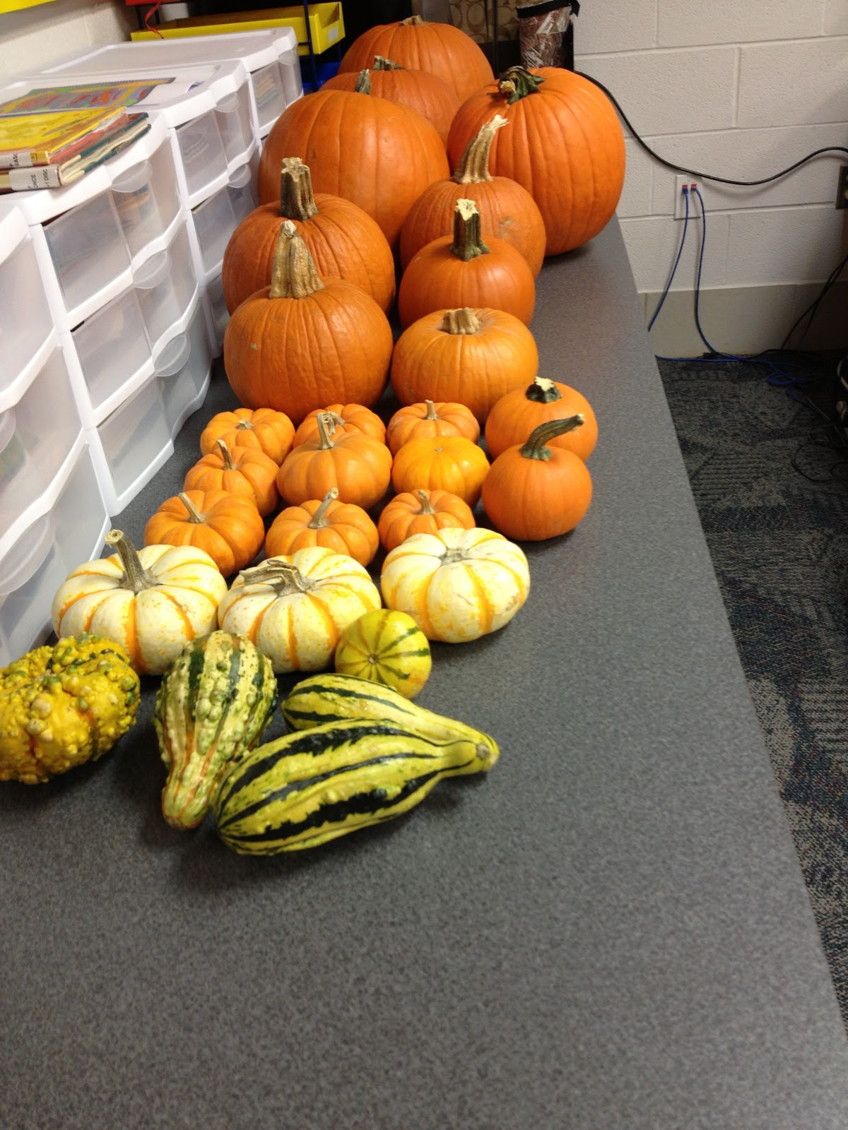 Teaching With Terhune Pumpkin Centers And Activities