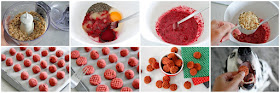Step-by-step instructions for making dog treats with cranberries and chicken