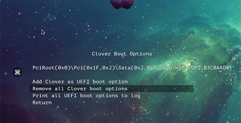 remove all clover boot option