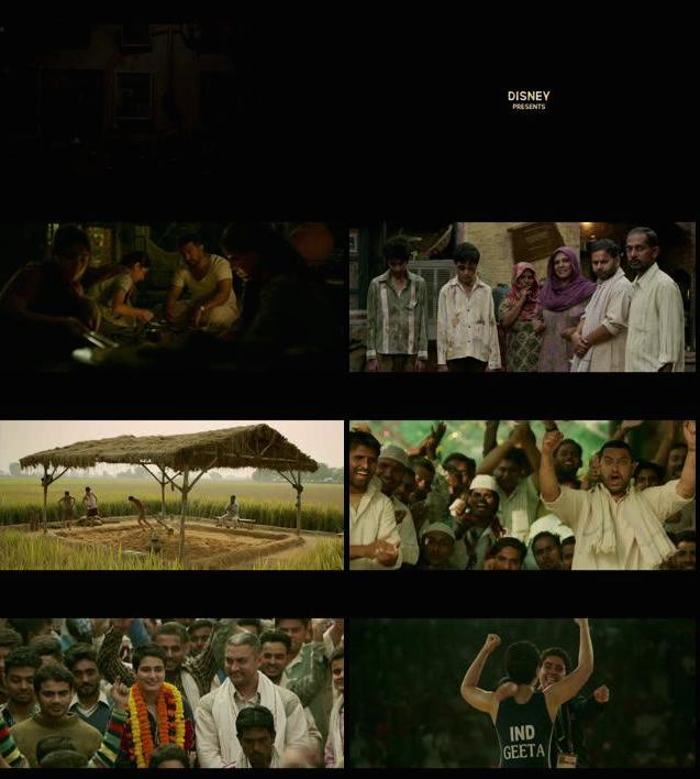 Dangal Official Trailer 720p HD Download