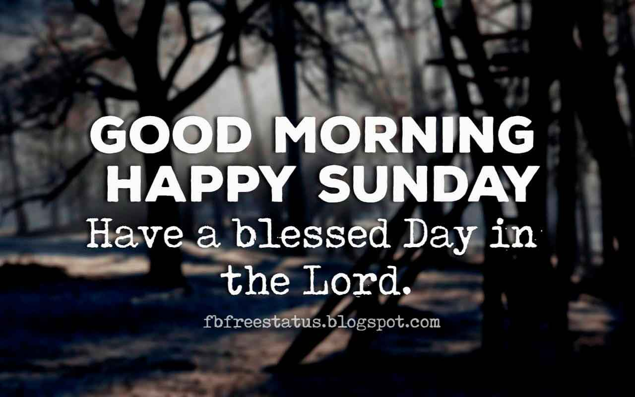 Good Morning, Happy Sunday have a blessed day in the lord.