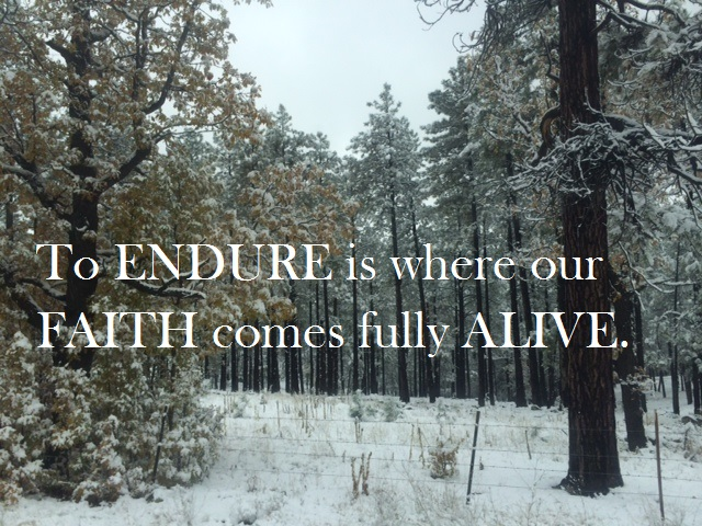 Kathy Cheek ~ Devotions from the Heart: A Prayer to Endure