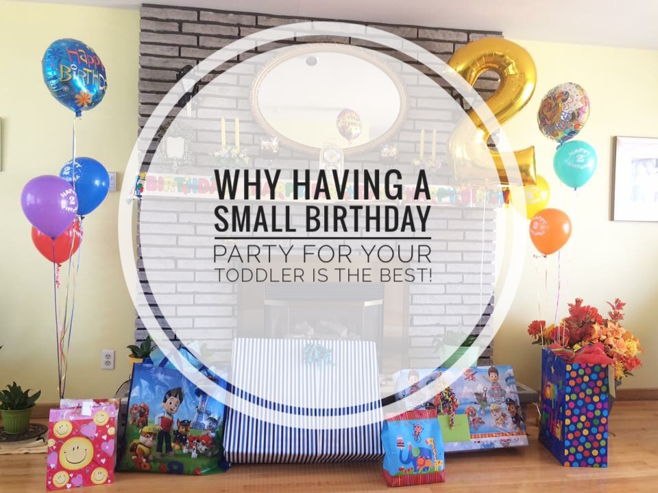 Why Having a Small Birthday Party for your Toddler is the Best