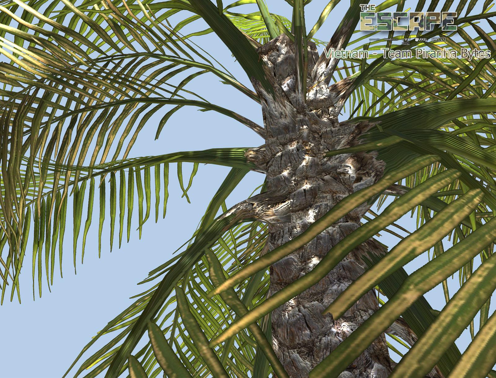 CG Environments by Sascha Henrichs: Escape Challenge