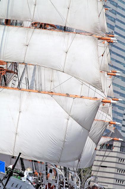 Full Sailed Nippon Maru, Yokohama   29th October, 12th November, 2017