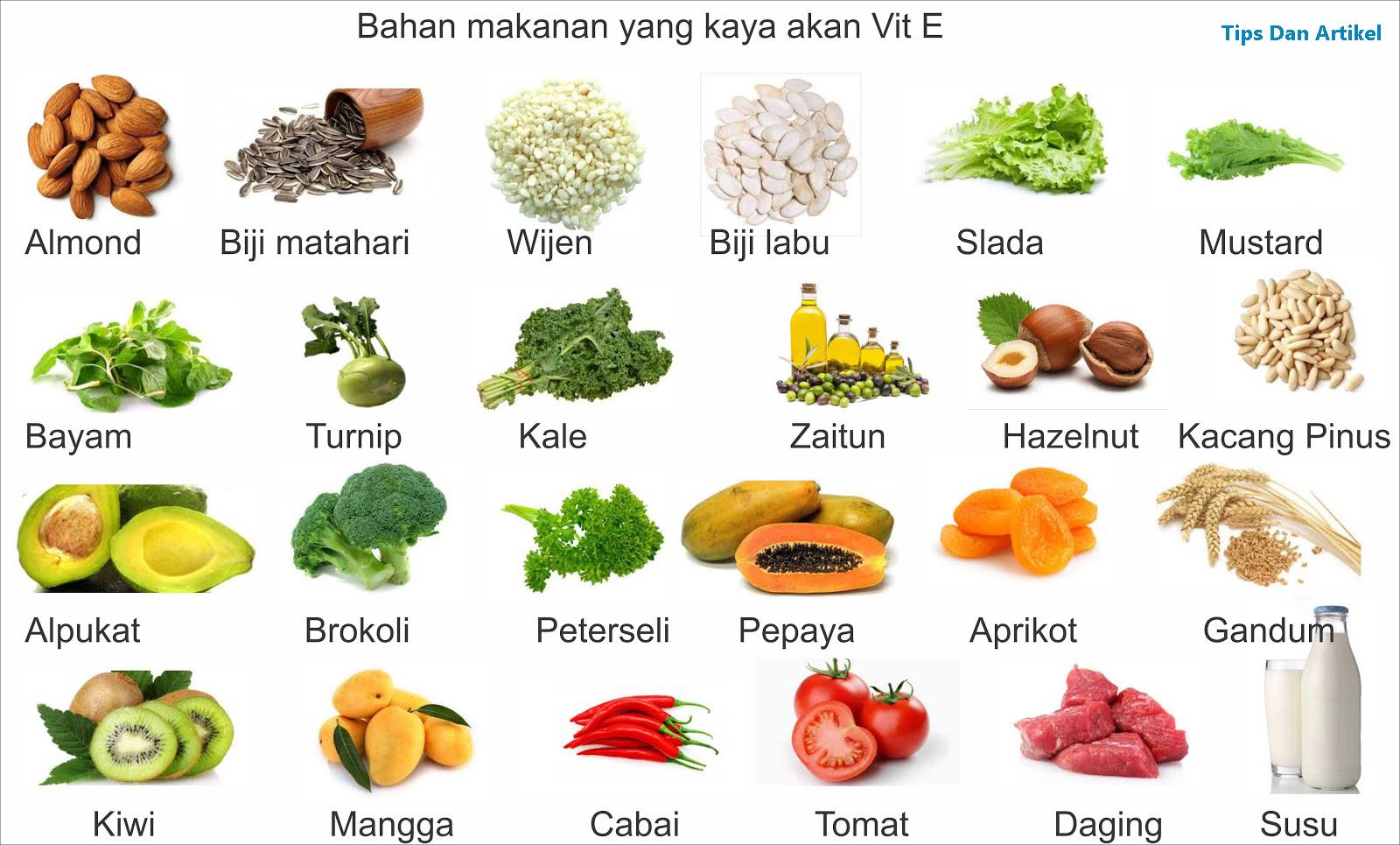 Vitamin Nak Sihat Nak Cantik Makanan Yang Mengandungi Vitamin E