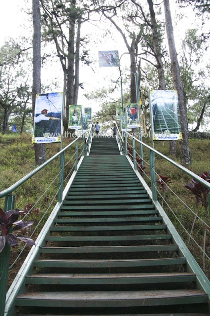 Staircase going up from Tree Top Adventure Baguio