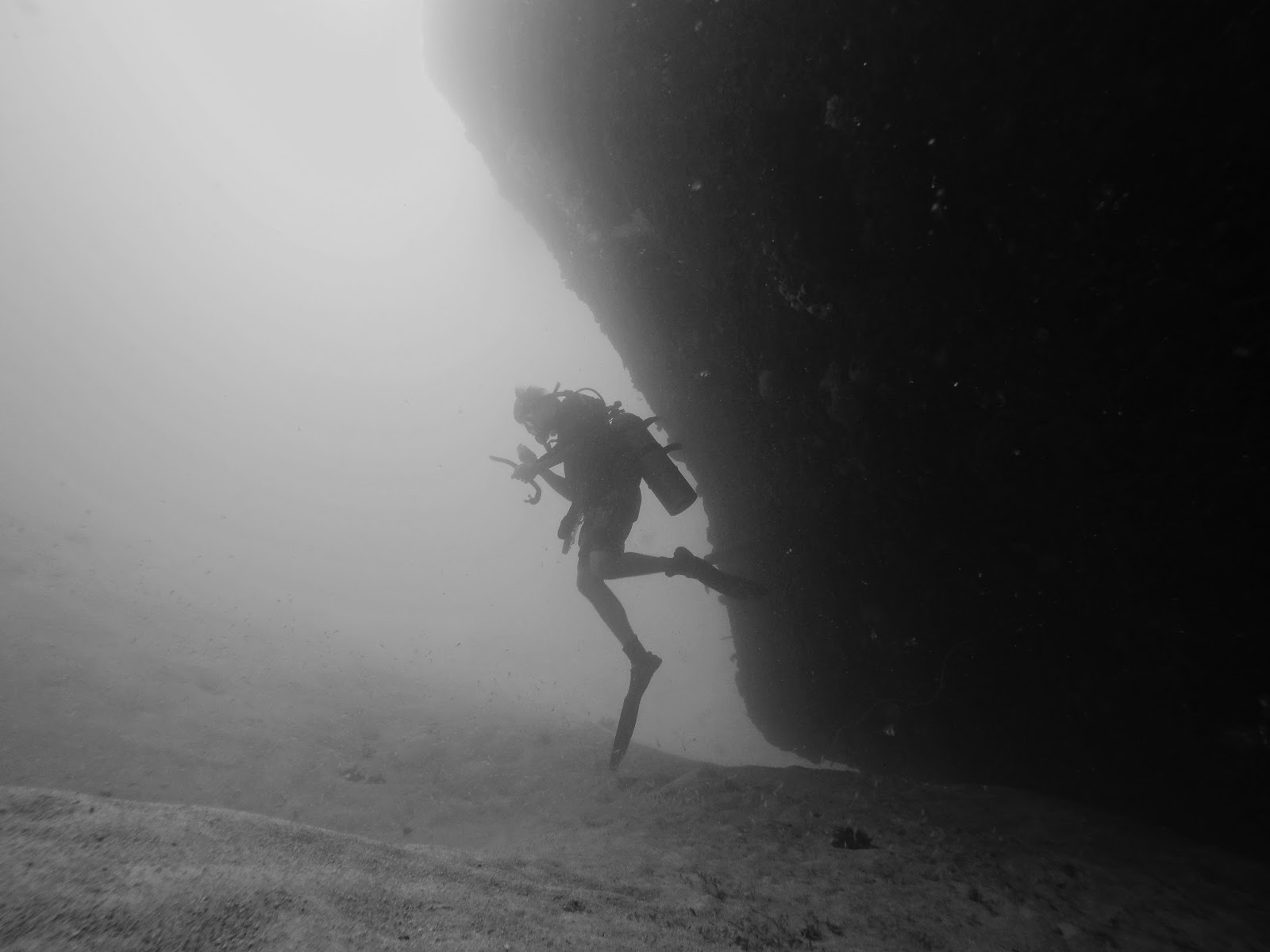 Diving, Underwater Photography, Barbados, Black and White Photography, GoPro