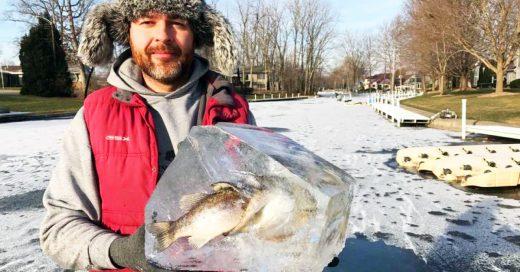 Encuentran dos peces congelados mientras uno tragaba al otro