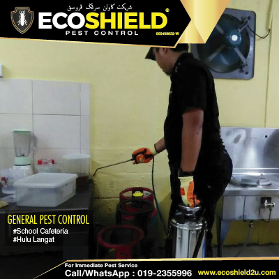 General Pest Control | Ants Roaches Rodent | Pest Control Selangor