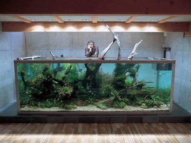 Hiasan Aquarium Unik dan Keren
