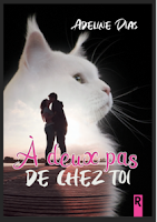 https://www.lesreinesdelanuit.com/2019/03/a-deux-pas-de-chez-toi-dadeline-dias.html