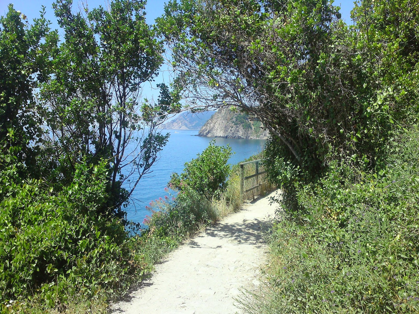 Vakantie, Cinque Terre, bloemenriviera, Ligurië, Italie: www.italiaansebloemenriviera.nl: No.1 bloemenriviera site! Bekijk het grootste (last minute) aanbod hotels, vakantiehuizen, b&b, agriturismo, appartementen, campings aan de bloemenriviera, Italië